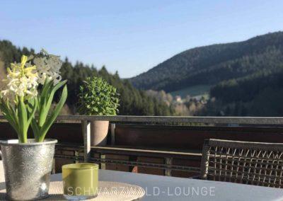 Luxus-Ferienwohnung Bergsee: Blick vom Balkon auf den Schwarzwald