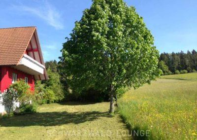 Ferienhaus Brestenberg: Außenansicht mit Balkon, Wiesen in der Umgebung und einem Baum am Haus