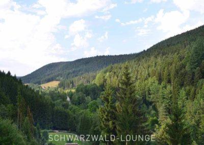 Wellness-Apartment Waldwiese: Die Aussicht auf den Schwarzwald vom Balkon aus