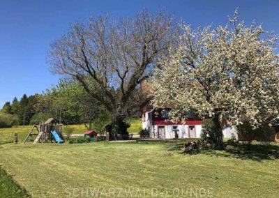 Ferienhaus Brestenberg: Außenansicht auf den Garten mit Spielplatz und großen Bäumen