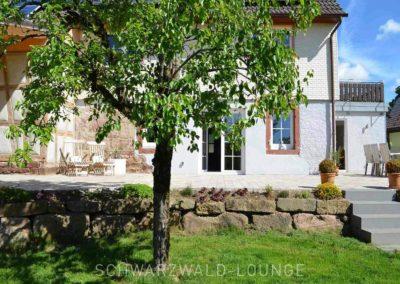 Chalet Lindenbuch: Blick auf die Terrasse mit Treppe zum Garten und Baum im Vordergrund