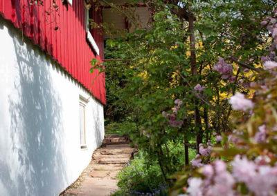 Ferienhaus Brestenberg: Außenansicht mit blühenden Bäumen im Garten