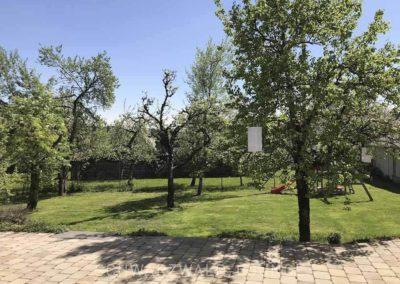 Chalet Lindenbuch: Der Garten mit Obstbäumen
