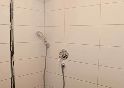 Wellness-Apartment Waldwiese: Die Regendusche im Bad