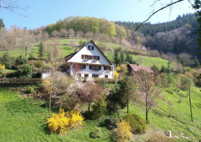 Schwarzwald Ferienhaus Busems Bad Peterstal Griesbach Hausansicht