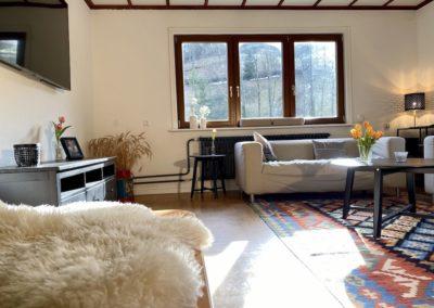 Schwarzwald Ferienhaus Busems Bad Peterstal Griesbach Wohnzimmer mit TV und Couch